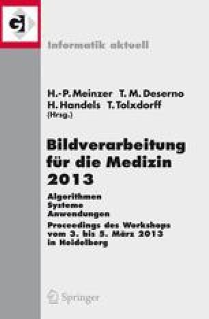 Bildverarbeitung für die Medizin 2013