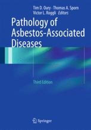 Occupational and environmental exposure to asbestos springerlink pathology of asbestos associated diseases urtaz Choice Image