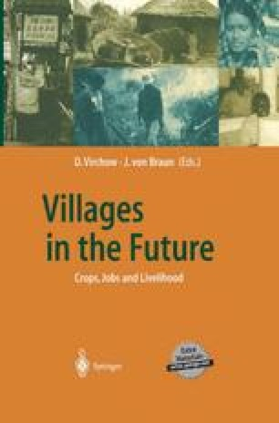 Villages in the Future