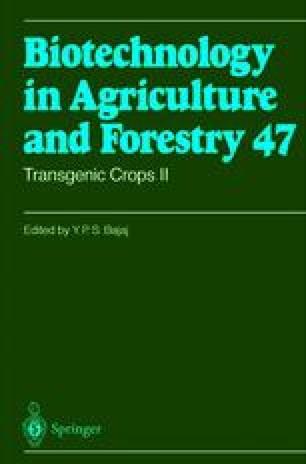 Transgenic Crops II