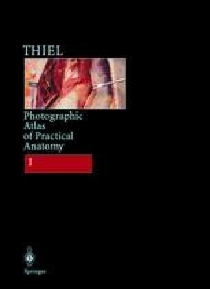 Photographic Atlas of Practical Anatomy I