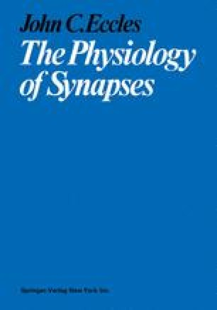 The Physiology of Synapses