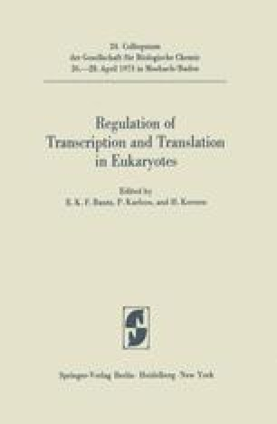 Regulation of Transcription and Translation in Eukaryotes