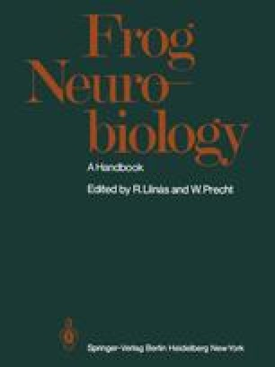 Frog Neurobiology