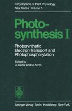 Photosynthesis I