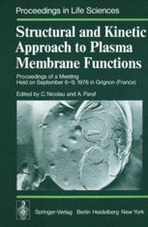 Structural and Kinetic Approach to Plasma Membrane Functions