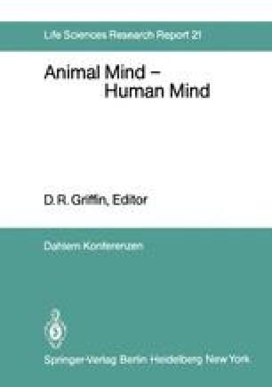 Animal Mind — Human Mind