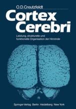 Cortex Cerebri