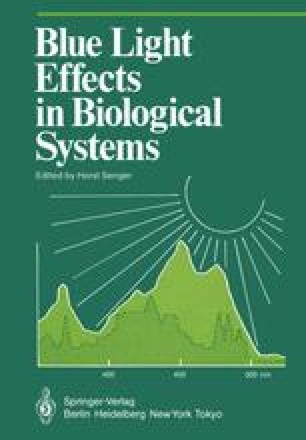 Blue Light Effects in Biological Systems