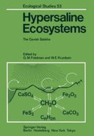 Hypersaline Ecosystems