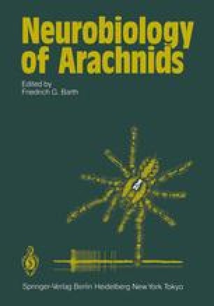 Neurobiology of Arachnids