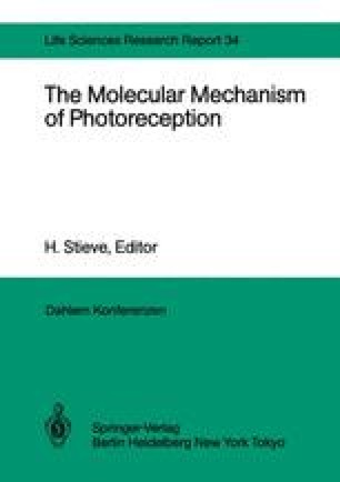 The Molecular Mechanism of Photoreception