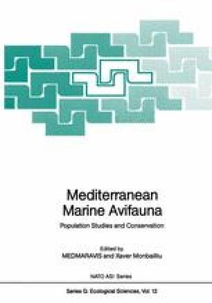 Mediterranean Marine Avifauna