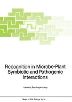 Recognition in Microbe-Plant Symbiotic and Pathogenic Interactions