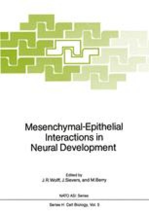 Mesenchymal-Epithelial Interactions in Neural Development