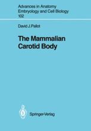 The Mammalian Carotid Body