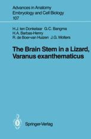The Brain Stem in a Lizard, Varanus exanthematicus