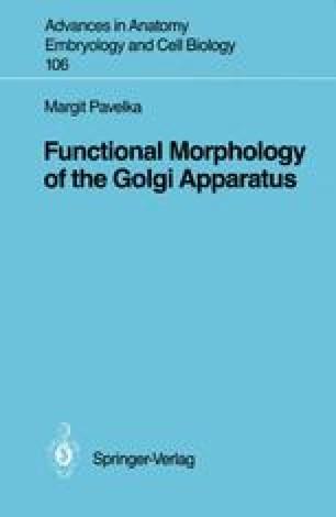Functional Morphology of the Golgi Apparatus