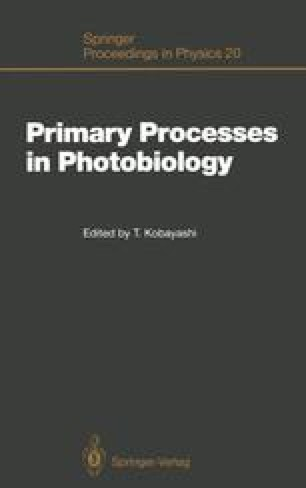 Primary Processes in Photobiology