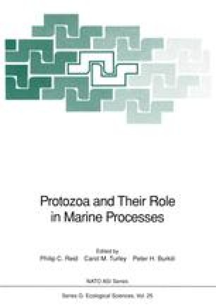 Protozoa and Their Role in Marine Processes