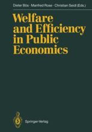 Welfare and Efficiency in Public Economics