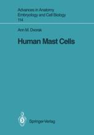 Human Mast Cells
