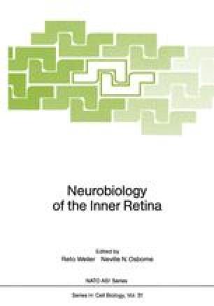 Neurobiology of the Inner Retina