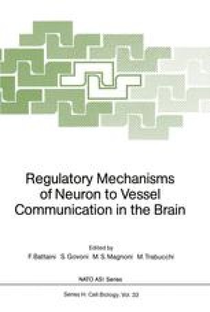 Regulatory Mechanisms of Neuron to Vessel Communication in the Brain