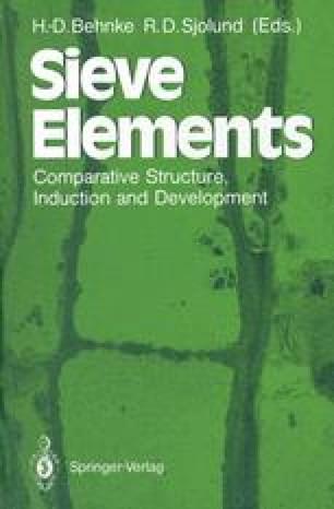 Sieve Elements