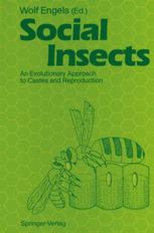 Social Insects