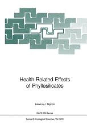 Health Related Effects of Phyllosilicates