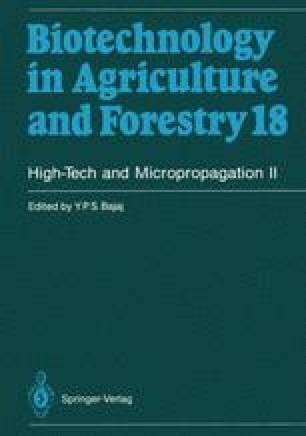 High-Tech and Micropropagation II