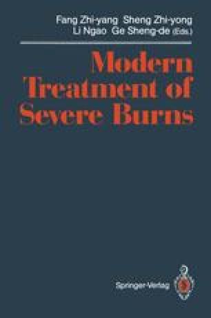 Modern Treatment of Severe Burns