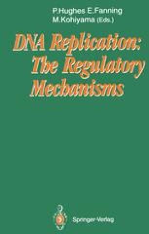 DNA Replication: The Regulatory Mechanisms