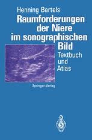 Raumforderungen der Niere im sonographischen Bild