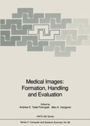 Medical Images: Formation, Handling and Evaluation