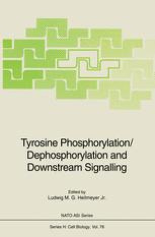 Tyrosine Phosphorylation/Dephosphorylation and Downstream Signalling