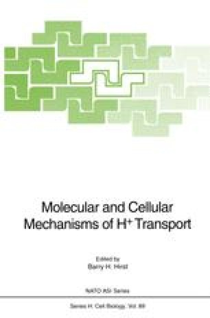 Molecular and Cellular Mechanisms of H+ Transport