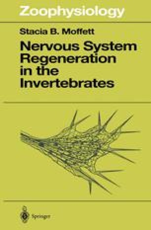 Nervous System Regeneration in the Invertebrates