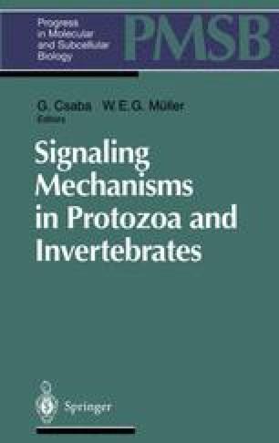 Signaling Mechanisms in Protozoa and Invertebrates
