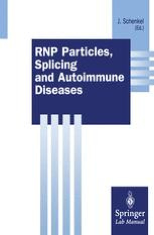 RNP Particles, Splicing and Autoimmune Diseases
