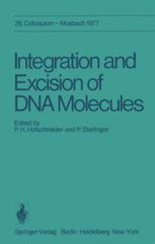 Integration and Excision of DNA Molecules