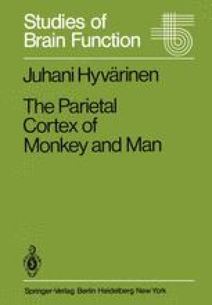 The Parietal Cortex of Monkey and Man