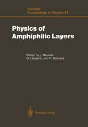 Physics of Amphiphilic Layers