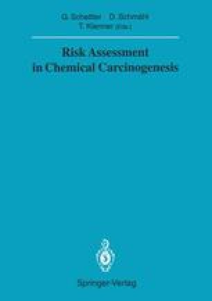 Risk Assessment in Chemical Carcinogenesis