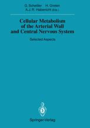 Cellular Metabolism of the Arterial Wall and Central Nervous System