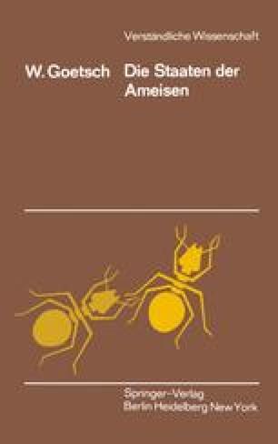 Die Staaten der Ameisen