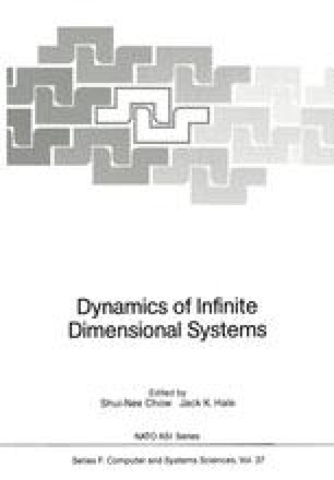 Dynamics of Infinite Dimensional Systems