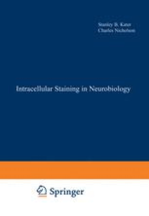 Intracellular Staining in Neurobiology
