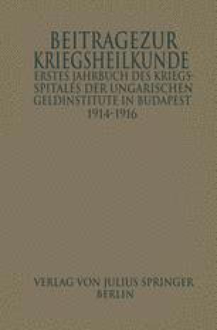 Erstes Jahrbuch des Kriegsspitals der Geldinstitute in Budapest
